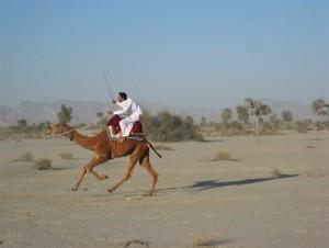 camel-jask