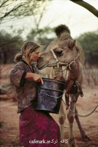 Robyn-Davidson-Walked-1700-Miles-Across-Australia-Camels-And-Dog-cafeturk-01