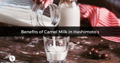 فواید شیر شتر برای بیماری کمکاری تیروئید هاشیموتو