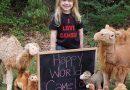 تاریخچه روز جهانی شتر (۲۲ ژوئن)