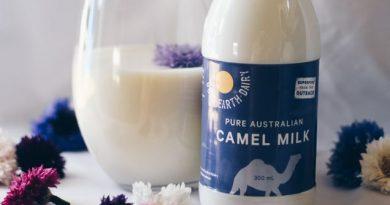 آیا شیر شتر پدیده بزرگ بعدی است؟